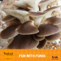 Artwork for Ep. 95: Fun With Fungi