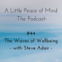 Artwork for Episode 44 - The Waves of Wellbeing with Steve Adair