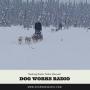 Artwork for Mushing Radio: Nolan Maxwell