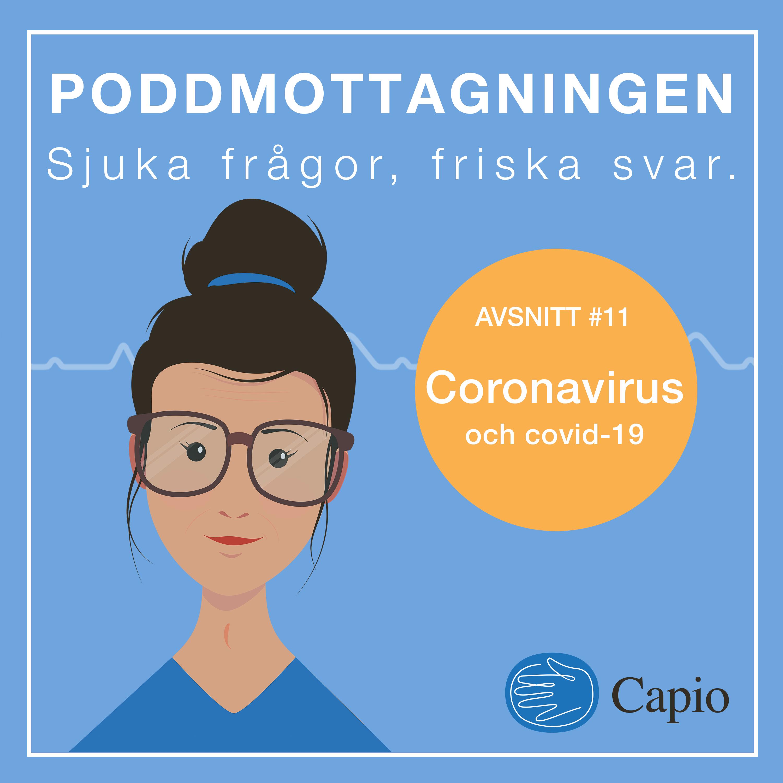 11. Coronavirus och covid-19