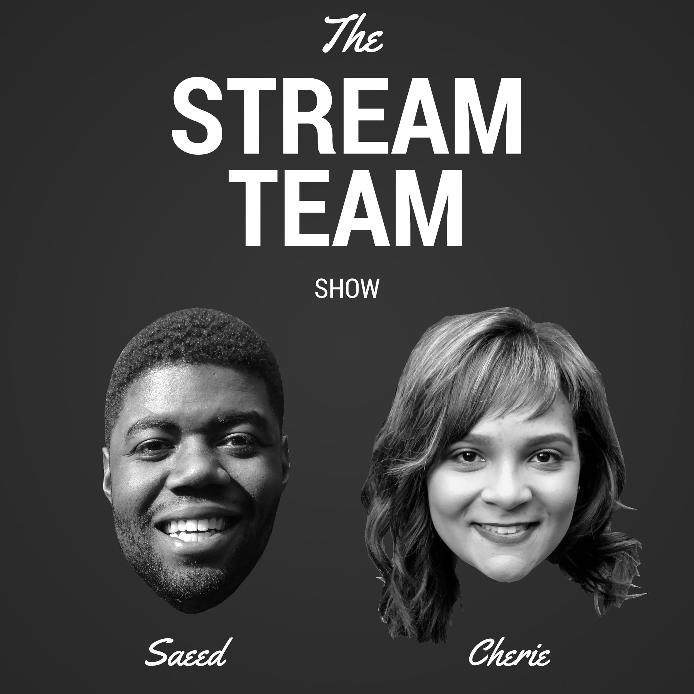 Stream Team Show show art