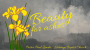 Artwork for Beauty for Ashes