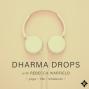 Artwork for Dharma Drops Trailer