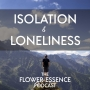 Artwork for FEP31 Isolation and Loneliness