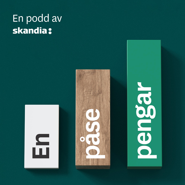 #6 Svensk doldis med 800 miljarder på fickan