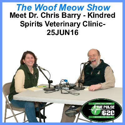 Pet Professional Profile – Dr. Chris Barry from Kindred Spirits Veterinary Clinic