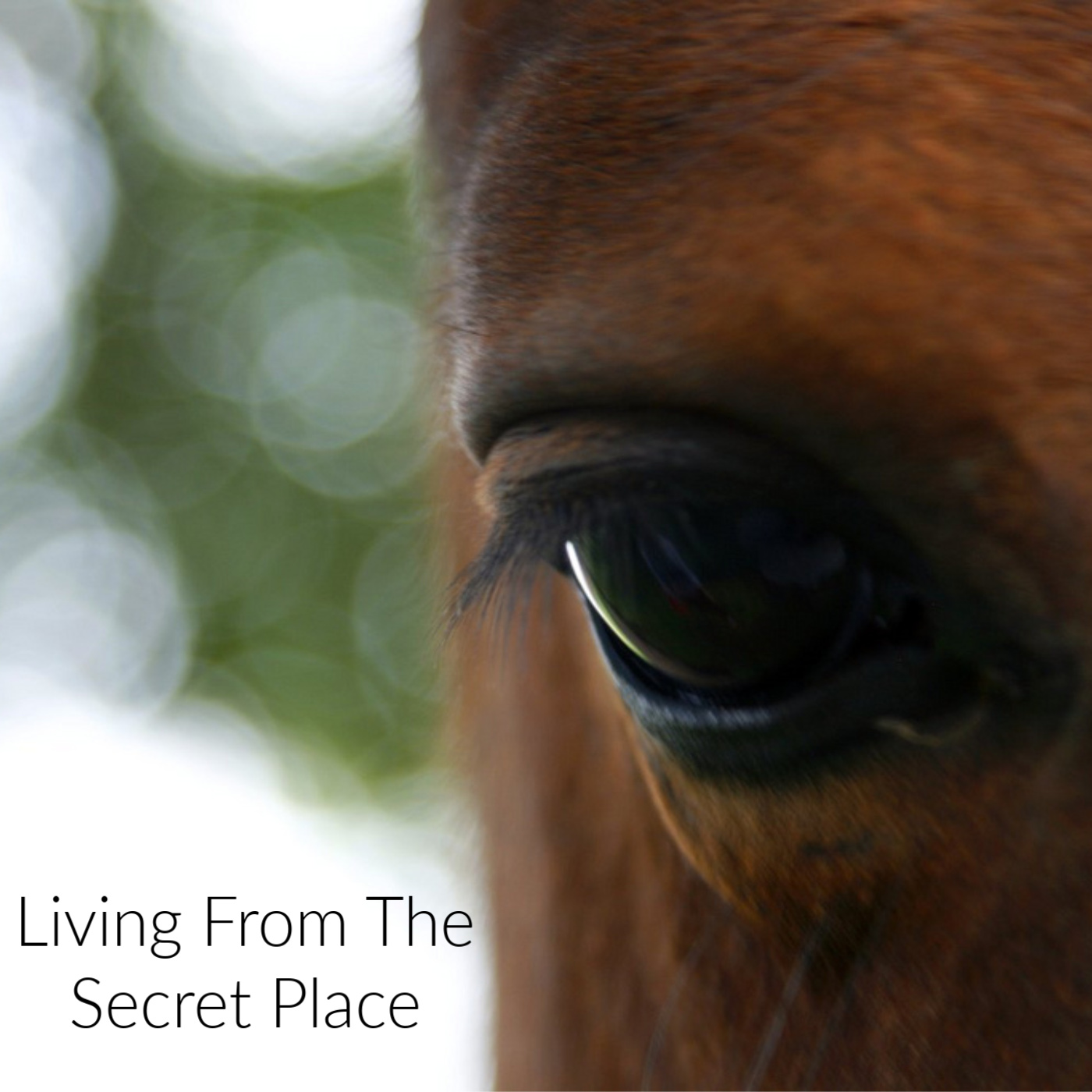 Living From the Secret Place show image