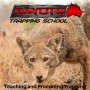 Artwork for Anti Activity - Episode 34 - Coyote Trapping School Podcast