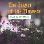 Artwork for The Prayer of the Flowers