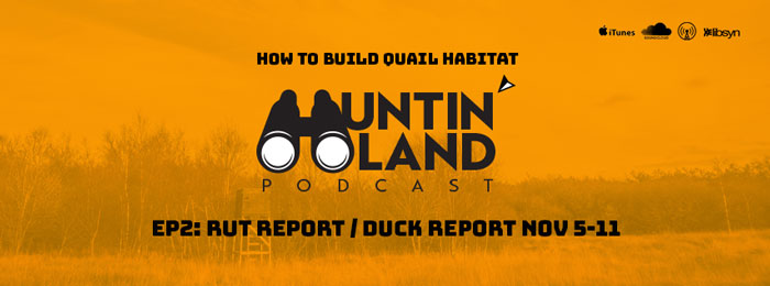 Huntin Land Podcast | Ep2 | Quail | Rut Report