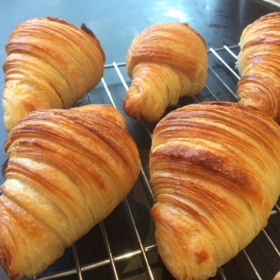 sourdough croissants