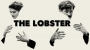 Artwork for CST #382: Don't Watch The Lobster
