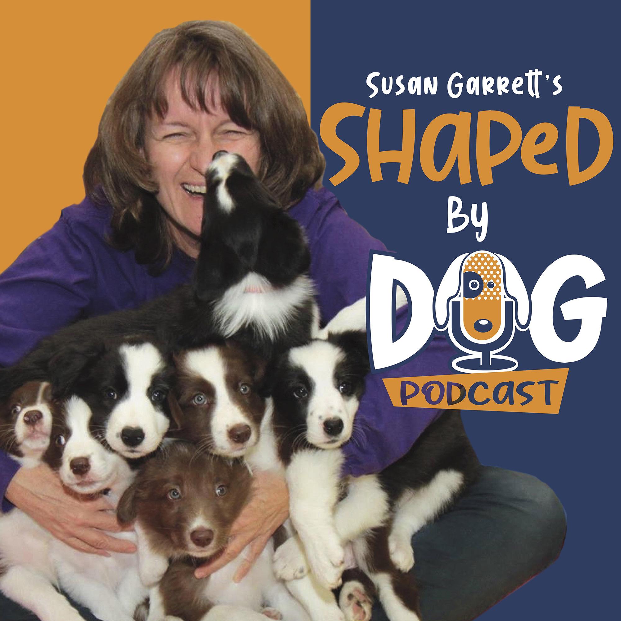 Shaped by Dog with Susan Garrett show art