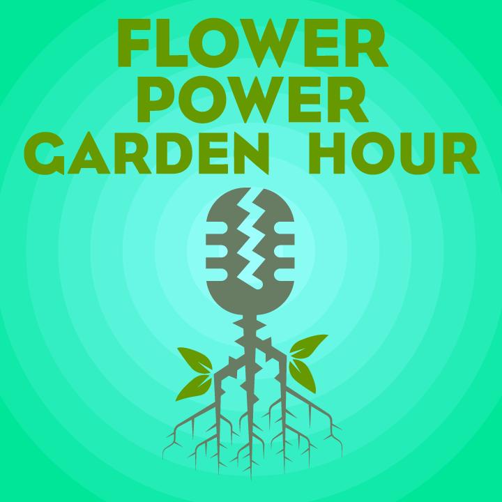 Flower Power Garden Hour 109: Sonya Harris, Bullock Garden Project