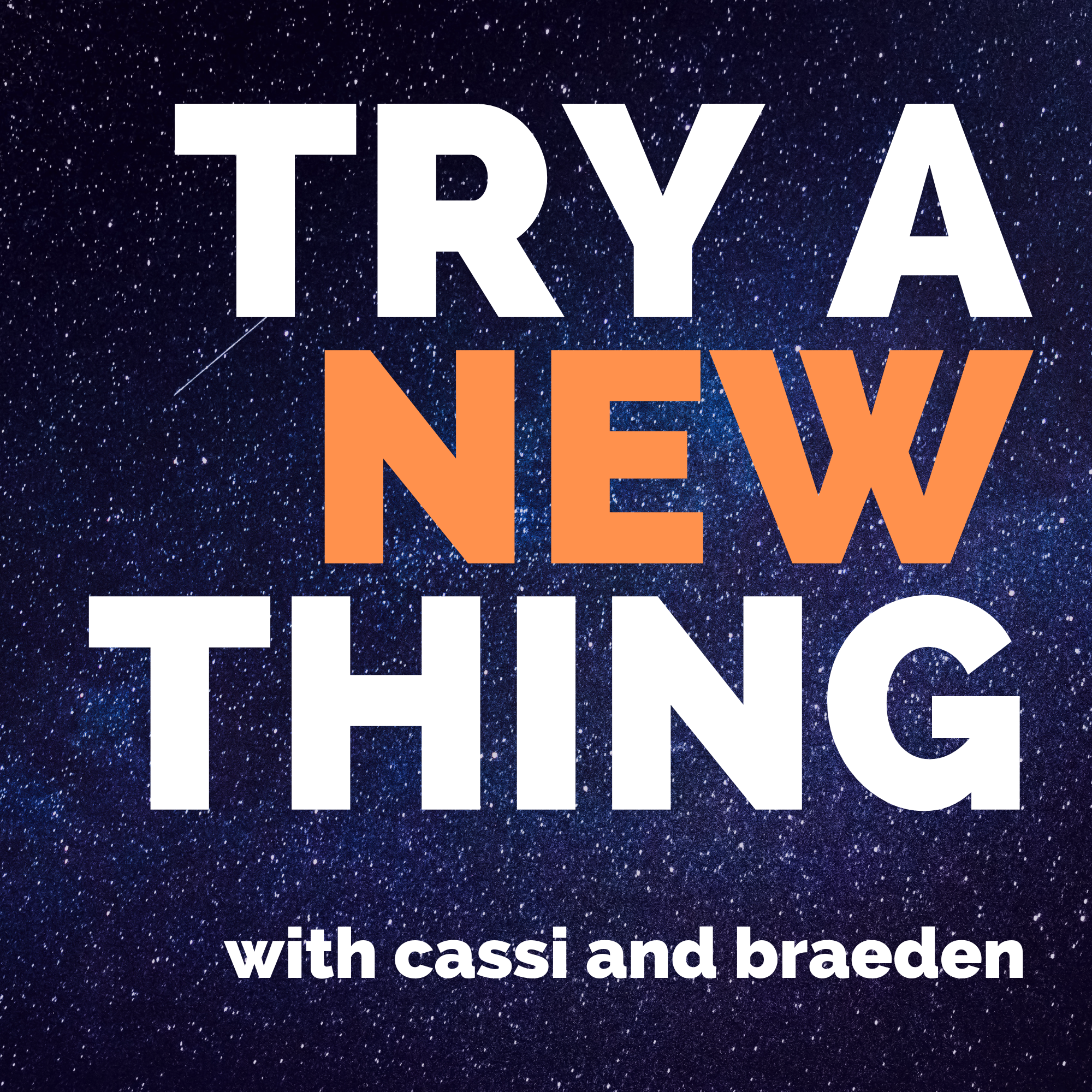 Try a New Thing show art