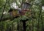 Artwork for Eufaula Treehouse Tree-sort