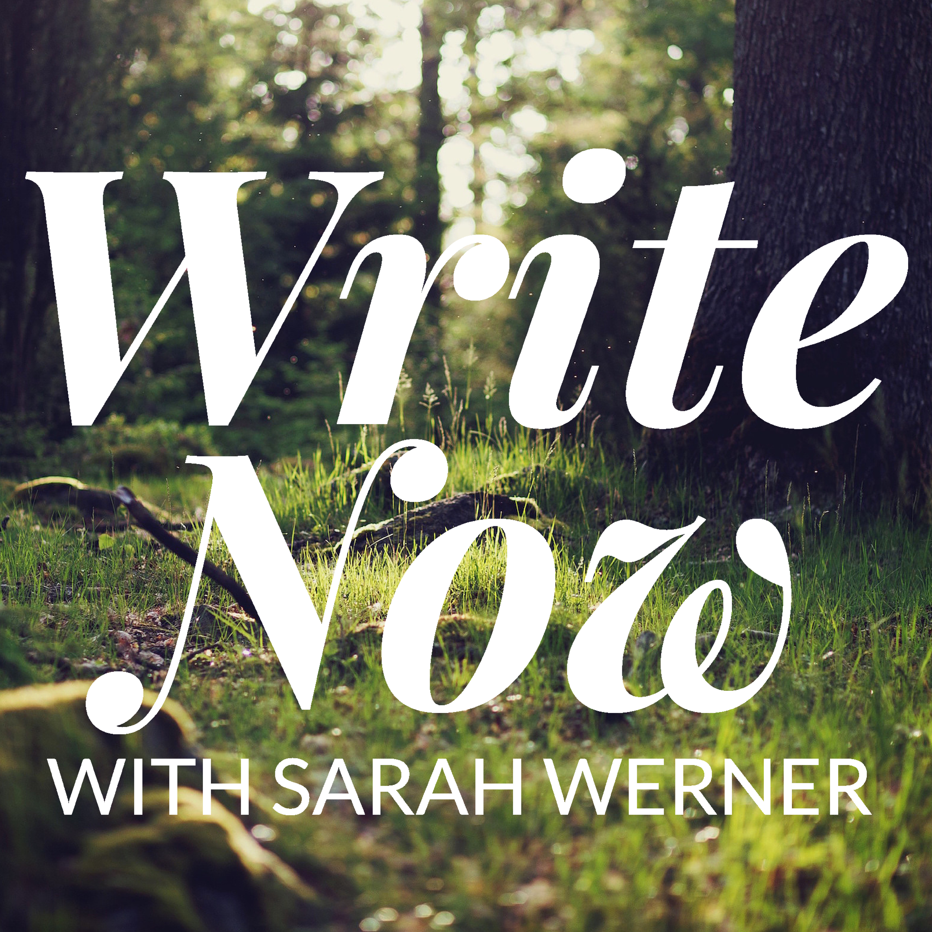 Write Now with Sarah Werner