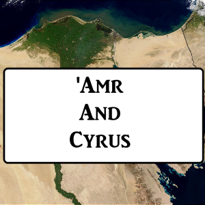 2-9: 'Amr And Cyrus
