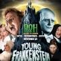Artwork for Young Frankenstein (1974) – Episode 65 – Decades of Horror 1970s