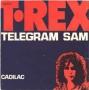 Artwork for T Rex - Telegram Sam - Time Warp Song of the Day