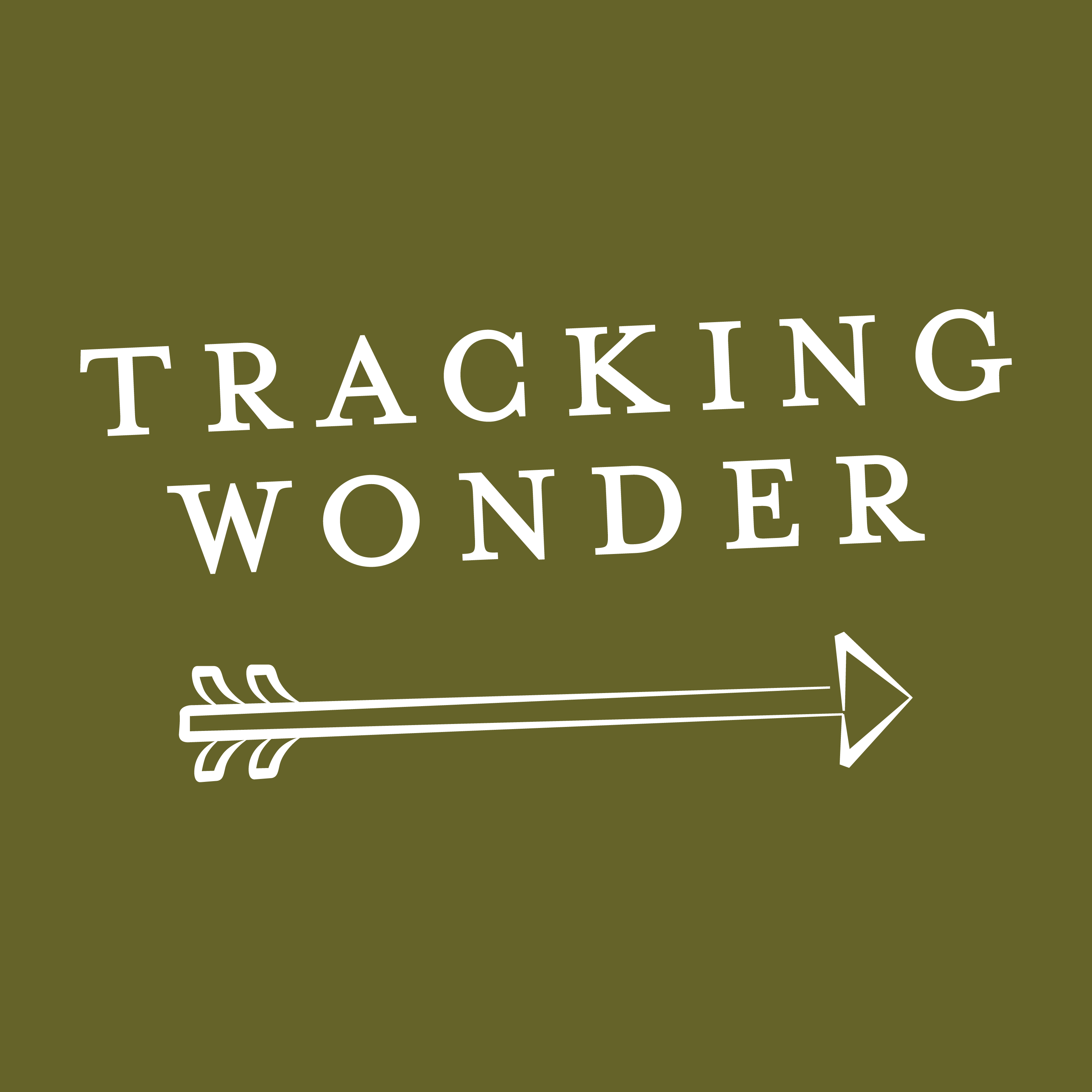 Tracking Wonder Podcast show art