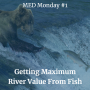 Artwork for Getting Maximum River Value From Fish | MED Monday #1