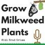 Artwork for GMP 001: Milkweed Motivations
