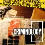 Artwork for S2 Ep15 - The Golden State Killer