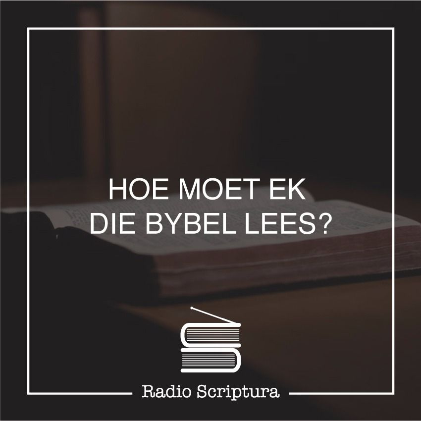 Hoe moet ek die Bybel lees?