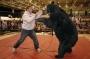 Artwork for NO BRAINS VS. BRAWN: THE DAYS WHEN BEAR-WRESTLING RULED