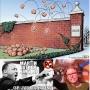 Artwork for Safe Zones: The Epitome of Political Correctness