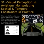 Artwork for 31 –Visual Perception in Aviation/ Manipulating Spatial & Temporal Constraints in Practice