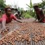 Artwork for Ghana: IMF Approves Third $116.2m Disbursement