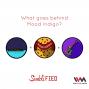 Artwork for Ep. 71: (Rebroadcast) What Goes Behind Mood Indigo?