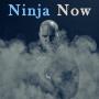 Artwork for Ninja Now - 5 Elements of Transformation