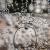 208 - Warum ein Luftfurz - Blase - den Blutzucker erhöht show art