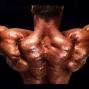 Artwork for 005 Muscle Expert John Meadows & Ben Pakulski Discuss Training Secrets of the Pros