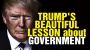 Artwork for Trump's beautiful lesson about government