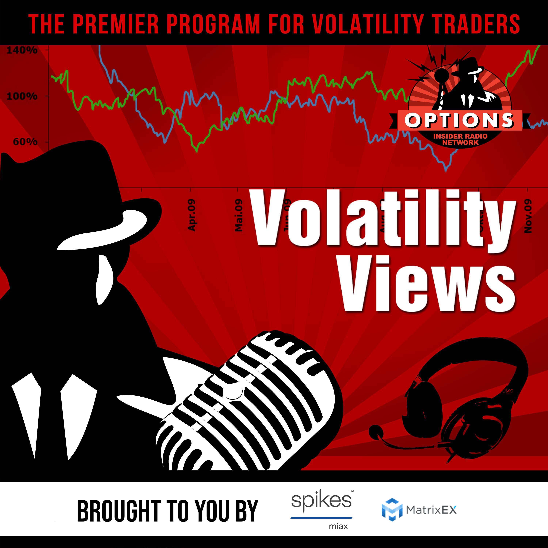 Volatility Views show art