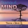 Artwork for Tranquil Mind Sleep Meditation