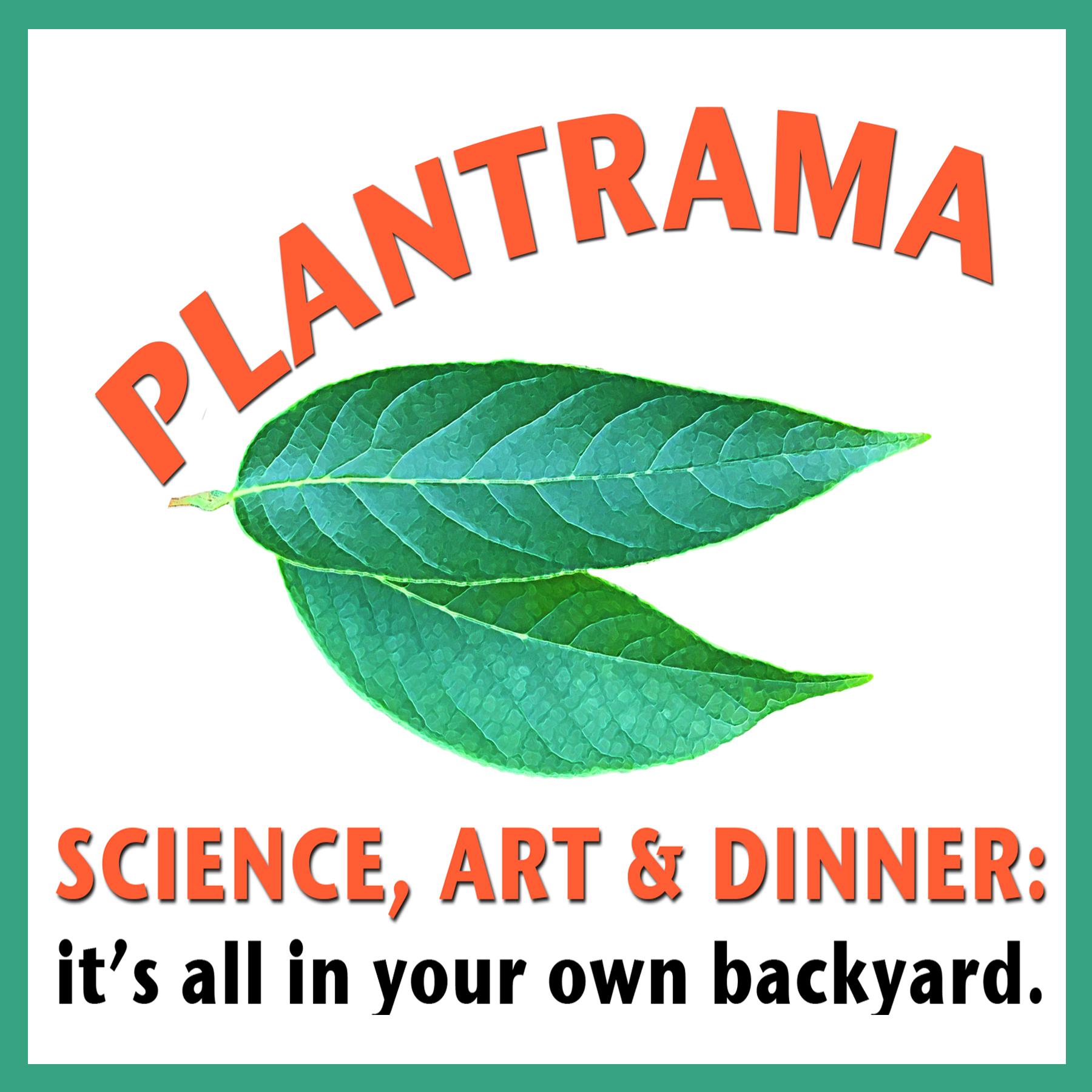 Artwork for 004 - Dinner, Diversity & Dahlias - Plantrama - plants, landscapes, & bringing nature indoors