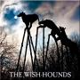 Artwork for MICROGORIA 02 – The Wish-Hounds