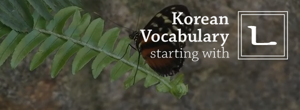 TTMIK - Korean Vocabulary Starting with ㄴ