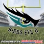 Artwork for Birds Eye Q - #Eagles vs #Panthers
