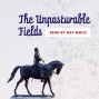 Artwork for The Unpasturable Fields