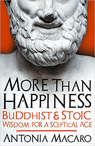 cover image of more than happiness