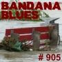Artwork for Bandana Blues #905 - Floods In Europe