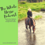 Artwork for Whole Horse | The Cowgirl Re-union explained with founders Stefanie Travers and Alexa