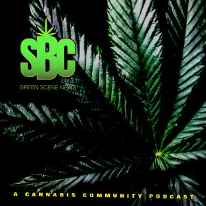Salt Baked City   A Cannabis Community Podcast
