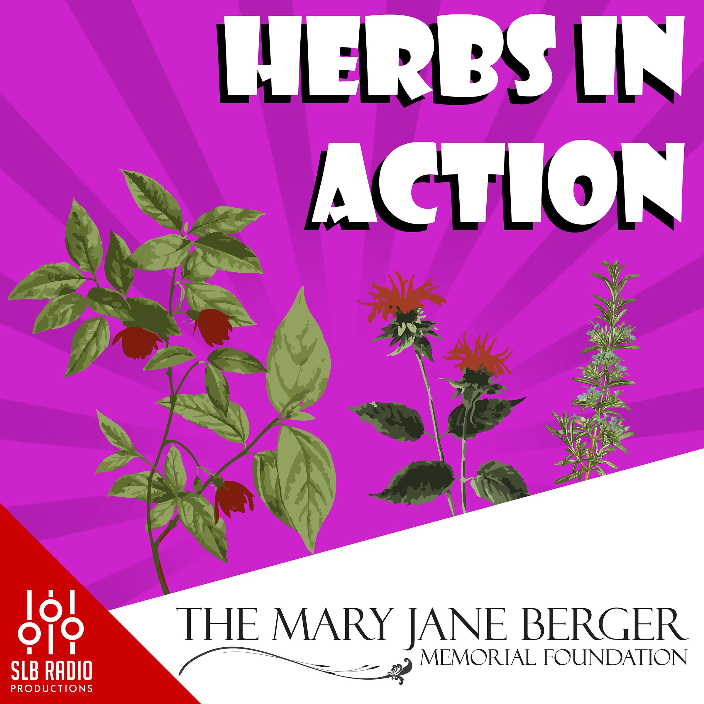 Herbs in Action show art